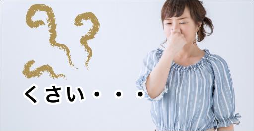 大阪府岸和田市の害獣駆除被害2 悪臭の増加の画像