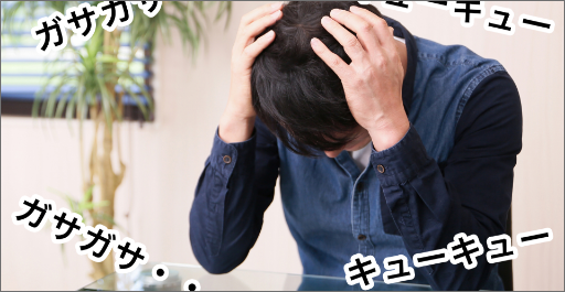 大阪府枚方市の害獣駆除被害4 騒音の影響画像