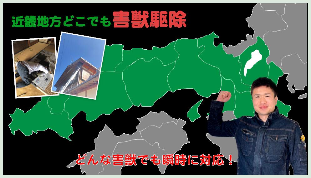 大阪府岸和田市でのネズミ駆除、イタチ駆除ならヒーローズにお任せください