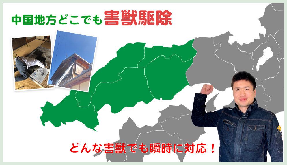 広島県山県郡 北広島町でのネズミ駆除、イタチ駆除ならヒーローズにお任せください