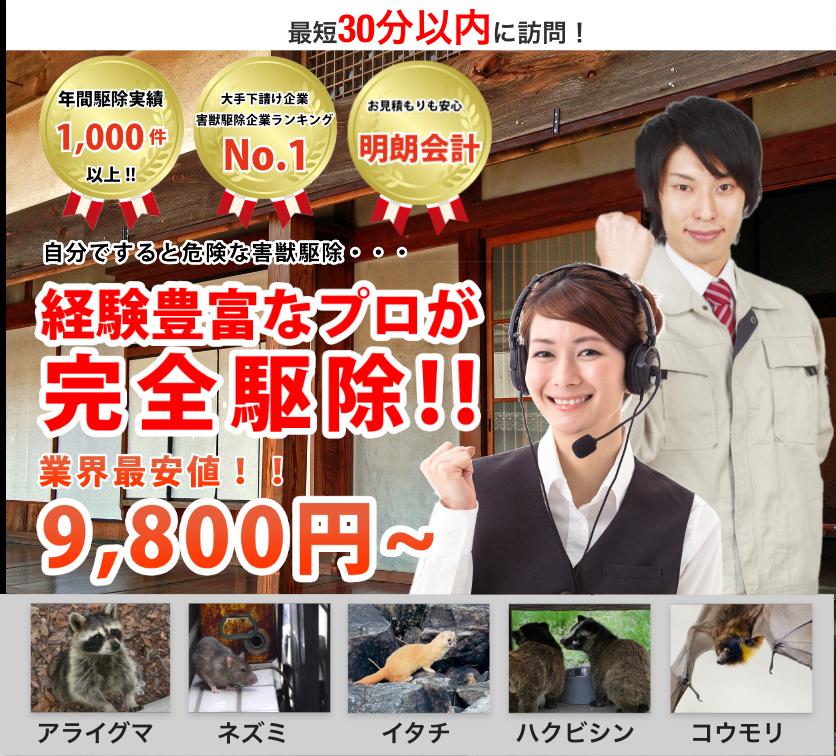 岡山県浅口郡 里庄町でのネズミ、イタチなどの害獣被害が急増中です!